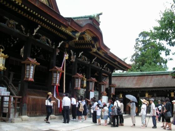 北野桂川2011-6月 024
