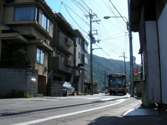 北野桂川2011-6月 287