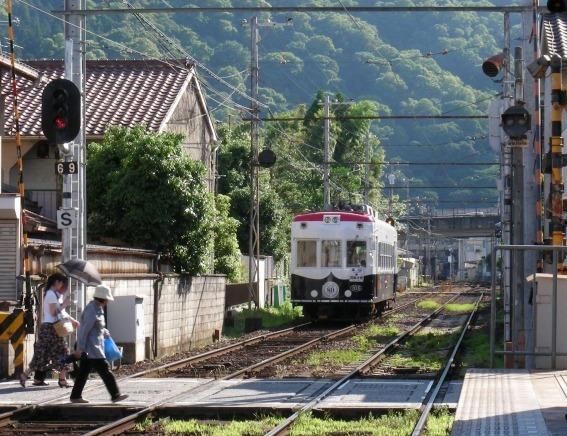 北野桂川2011-6月 294
