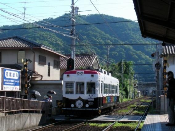 北野桂川2011-6月 293