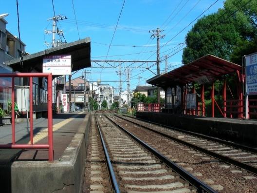 北野桂川2011-6月 183