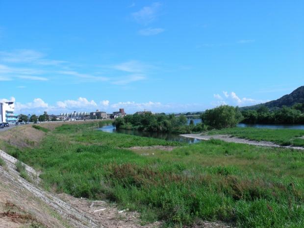 北野桂川2011-6月 218