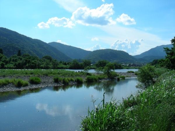 北野桂川2011-6月 229