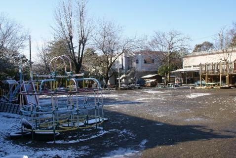 DSC05693雪1