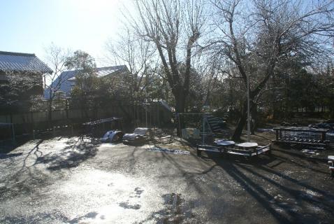 DSC05717雪11