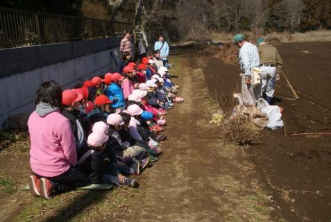 2012-03-12 23年度年少、年中じゃがいも種イモ植え 033 (800x536)