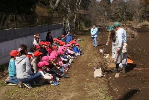 2012-03-12 23年度年少、年中じゃがいも種イモ植え 067 (800x536)