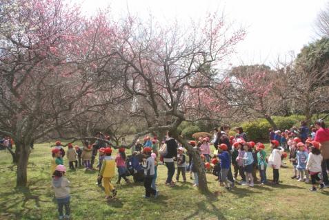 2012-03-14 2月、園外保育城址公園 042 (800x536)