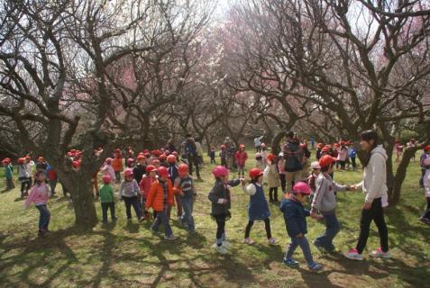 2012-03-14 2月、園外保育城址公園 048 (800x536)