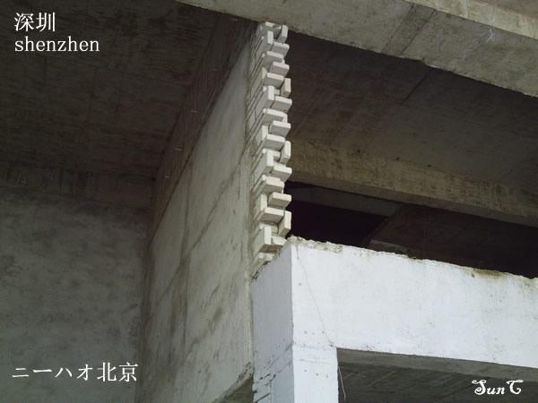 ニーハオ北京 シンセン41