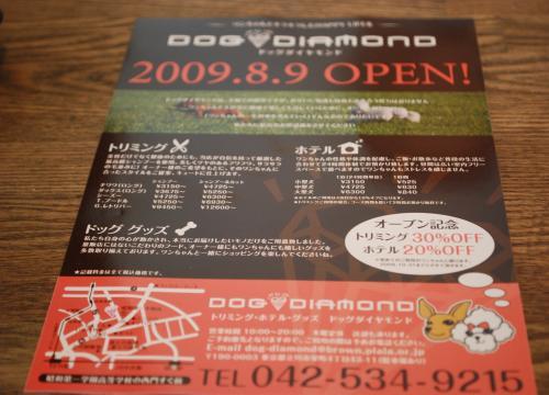 DSC_0018_convert_20090811230232.jpg