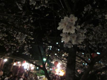 2011-04-03_11.jpg