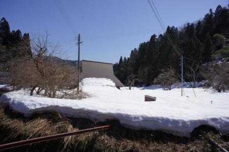 20120331-1.jpg