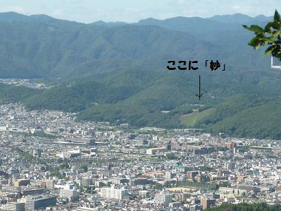 P1010174-1.jpg