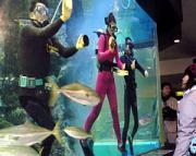 魚津市の魚津水族館で