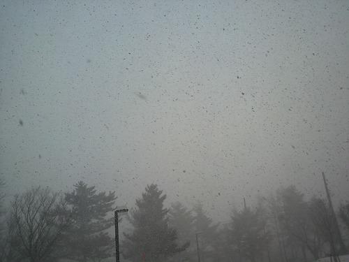 なごり雪044