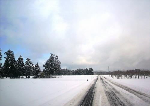 雪063 (1)
