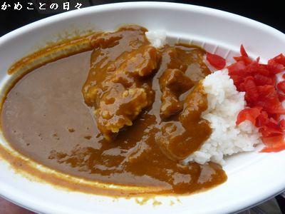 P1250339-curry.jpg