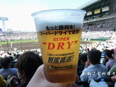P1250397-beer.jpg