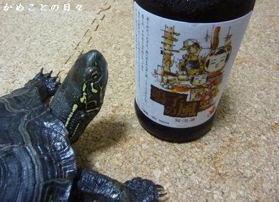 P1280357-beer.jpg