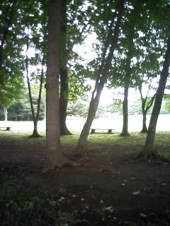 2009-09-02_09-28_0001.jpg