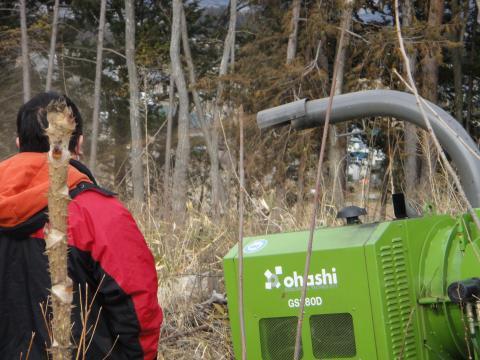信州伐採6
