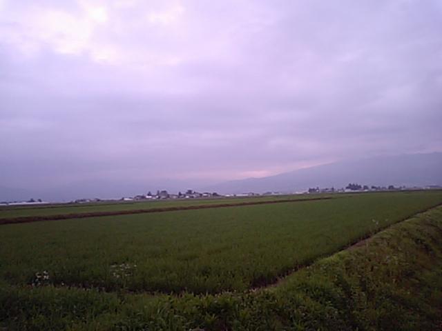 MA322289.jpg
