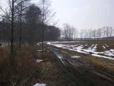 本田農場風景