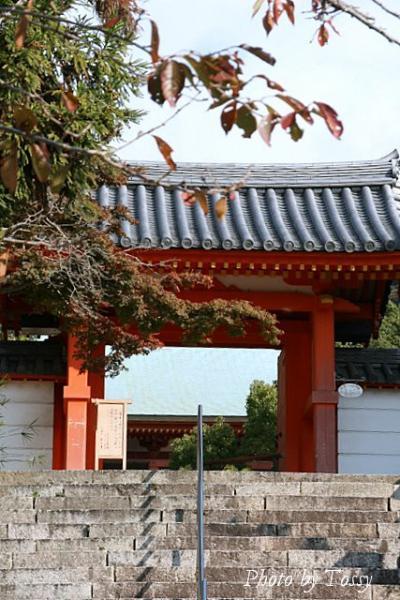 太山寺中門
