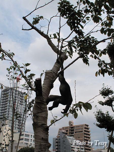 サファッリ 樹の上にオランウータン?