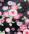 布 八重桜黒