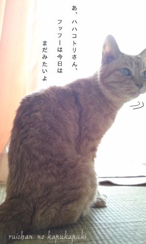 090920_ruichan_003.jpg