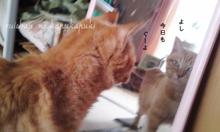 090920_ruichan_006.jpg