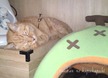 090920_ruichan_007.jpg