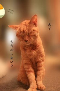 091102_ruichan_004.jpg