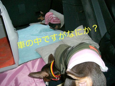 misugi06.jpg