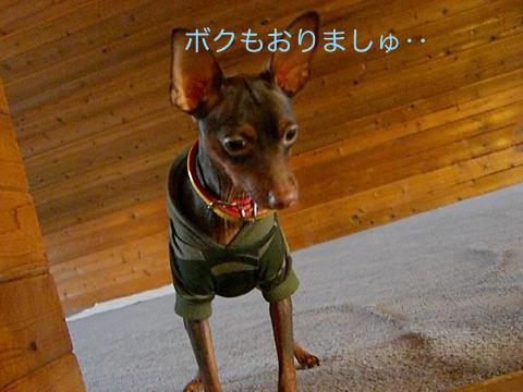 misugi27.jpg