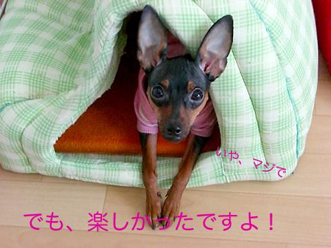 misugi58.jpg