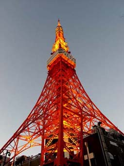 東京タワー夕方
