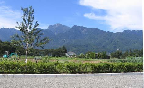 H210911甲斐駒from白砂農園