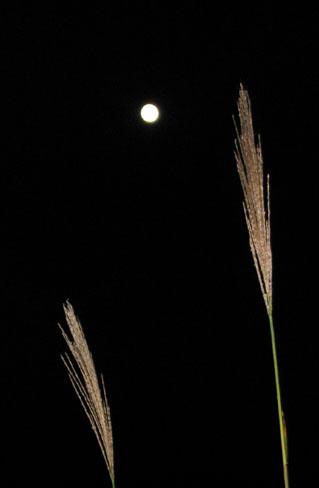 H211004満月