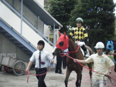 110708last-yoshidaminoru.jpg