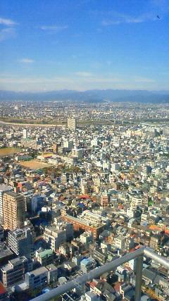 タワーからの景色