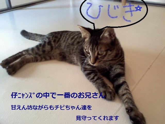P2011_0624_162939.jpg