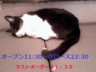 P2011_0707.jpg