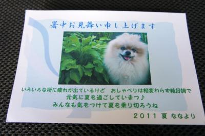 20110729DSC02594.jpg