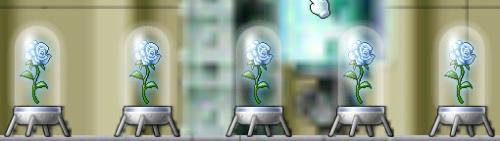 雪園の薔薇