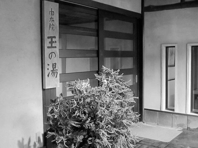 yufu2IMG_3105.jpg