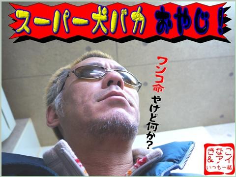 XSとーちゃんa