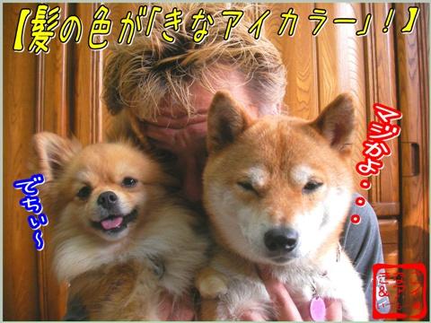 XSとちゃん&W080410b